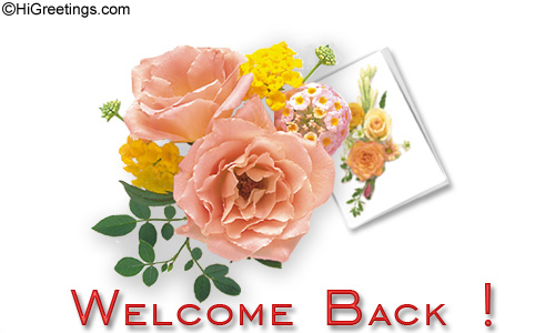 Send ecards welcome back some beautiful flowers to say higreetings congratulations welcome back some beautiful flowers to say m4hsunfo
