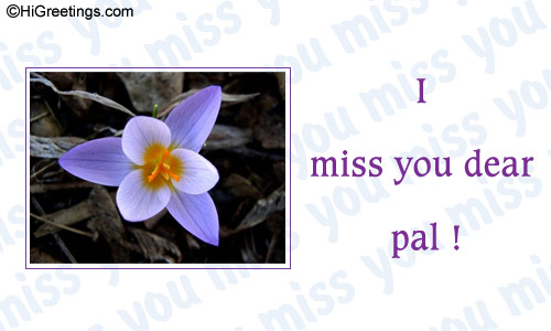 Send ecards miss you i miss you send a lovely miss you card to your dear friend send this miss you i miss you greeting card to your loved ones m4hsunfo